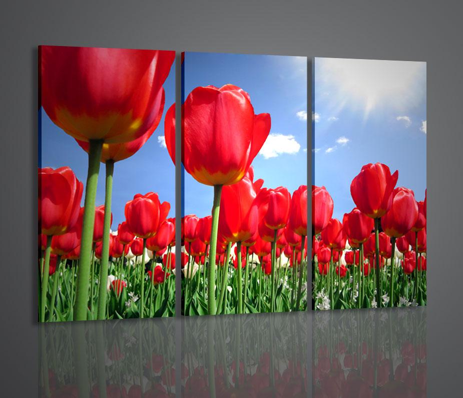 QUADRI MODERNI RED TULIPS TULIPANI FIORI ARREDAMENTI 130x90 | eBay