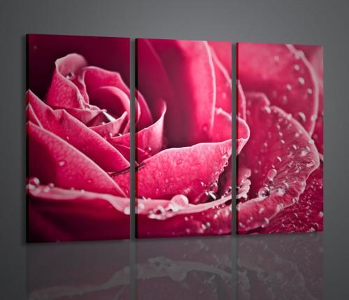 Vendita quadri fiori italian modern art 2009 for Quadri trittici moderni