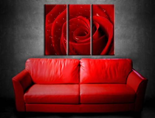 Quadro rosa rossa quadri moderni