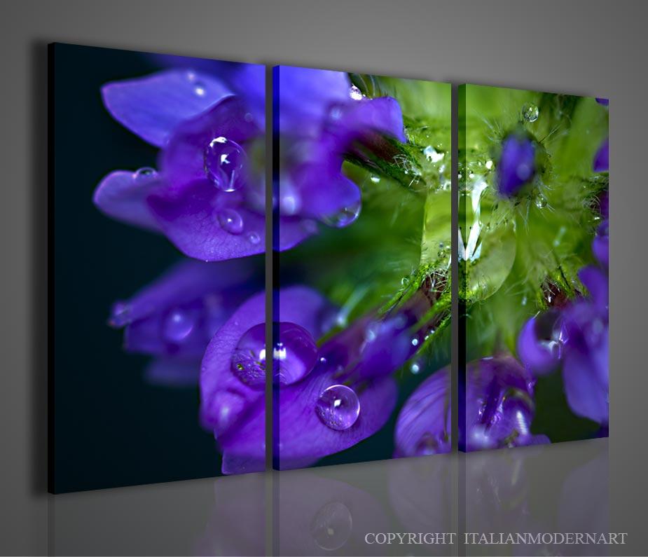 Quadri fiori flowers vendita quadri quadri moderni for Quadri fiori